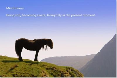 mindfulness_158693355.jpg